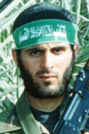 محمود عبد الفتاح الشاعر